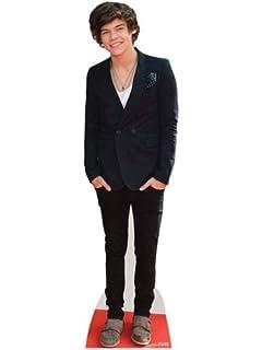Standee. mini size Harry Styles 2013 Cardboard Cutout