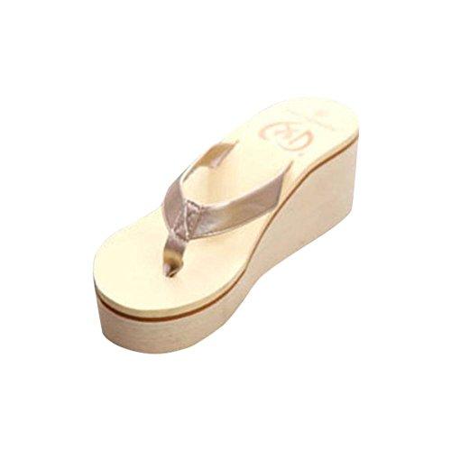 (Women Flip Flops Slippers Daoroka Summer Anti-Slip Platform Wedge Clip Toe Sandals Casual Soft Beach Bohemian Home Shoes (US:8,)