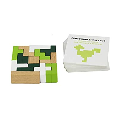 STEM Pentomino - Mathematics Educational Game for Kids 8+ - STEM Educational Toys by Professor Puzzle: Toys & Games