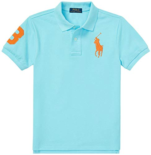 Big Pony Polo Mesh - Polo Ralph Lauren Boys Big Pony Mesh Polo Shirt (M (10-12), HammBlue)