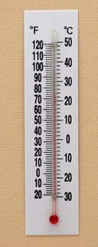 Thermometer Plastic Back Double Scale Pack of 10