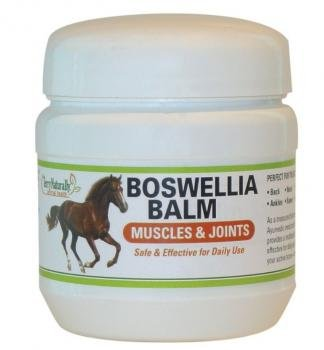 Terry Naturally Animal Health Equine Boswellia Balm Muscle & Joints - 7.0 oz