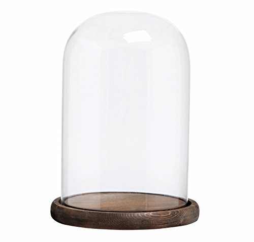 (MyGift Decorative Clear Glass Cloche Bell Jar Display Case with Rustic Wood Base/Tabletop Centerpiece Dome, 10 X 7 Inches)