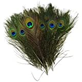MOR PANKH / PEACOCK FEATHERS SET OF 30 PCS