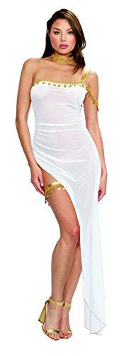 Dreamgirl Women's Sheer White Goddess-Themed One-Shoulder Gown Costume (Goddess Sheer Costumes)