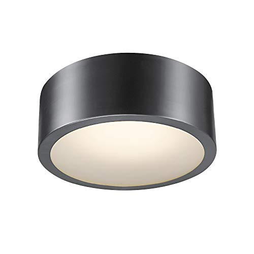 - Globe Electric Edinburg LED Integrated Flush Mount Ceiling Light, Black Iron Finish, Frosted Glass Shade, 18W, 3000 Kelvin, 1100 Lumens, Dimmable 60304