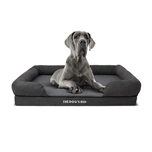 The Dog's Bed Orthopedic Dog Bed XL Grey Plush 43.5x34, Premium Memory Foam, Pain Relief: Arthritis, Hip & Elbow Dysplasia, Post Surgery, Lameness, Supportive, Calming, Waterproof Washable Cover