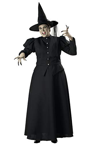 The Wizard Of Oz Wicked Witch Costumes - InCharacter Wretched Witch Plus Size Costume-XX-Large