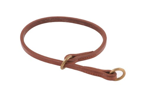 Flat Leather Dog Collar (Alvalley Flat Slip Collar for Dogs Thickness 3/16 in x Large 16 in)