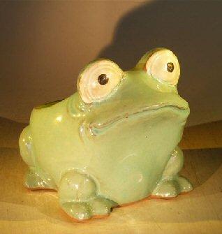 Bonsai Boy Light Blue Frog Planter - 7.0
