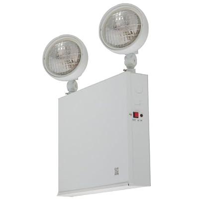 LFI Lights NYC Emergency Light - Steel - 2 Head - 54W - ELST54W2H