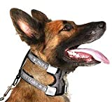 Cesar Millan Pack Leader Collar - Training Collar