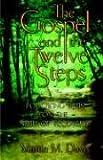 The Gospel and the Twelve Steps, Martin Davis, 1414103131