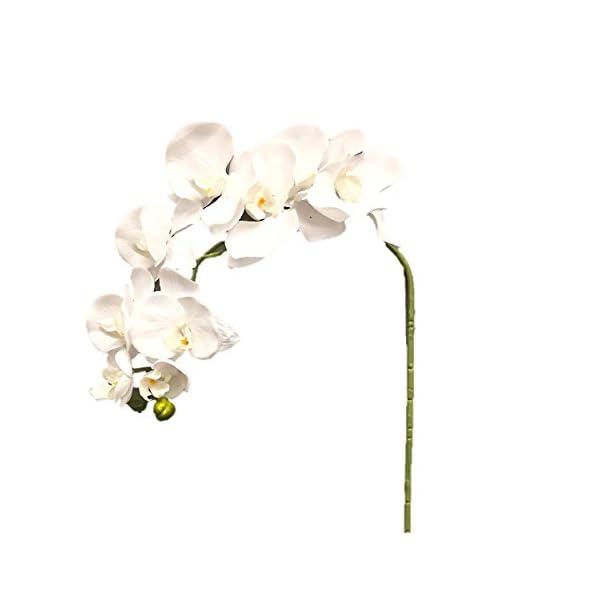 Silk Flower Garden 2 Pcs Artificial Butterfly Orchid Spray 38″, White