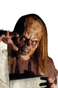 Foam Prosthetic Undead Zombie (Foam Prosthetic Undead Zombie)