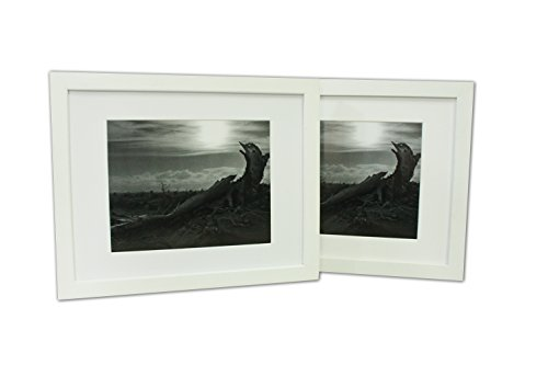 , Set of 2 White Photo Wood Frame 11x14 with Mat for 8x10