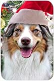 Australian Shepherd Red Merle Tempered Cutting Board Christmas