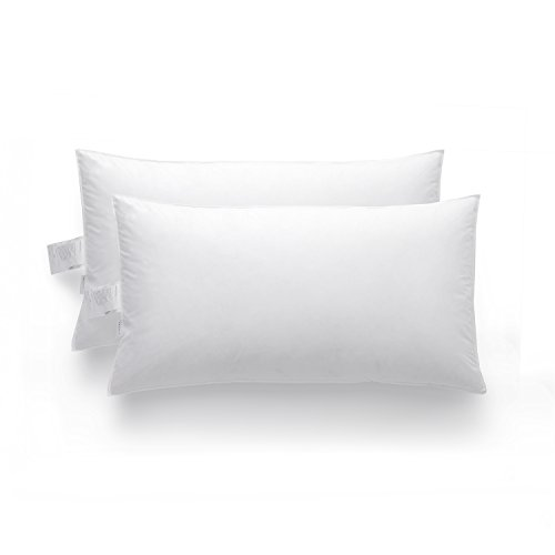 Zestilk White Goose Down and Feather Extra Firm Pillow 2 Pack King Size FDP02