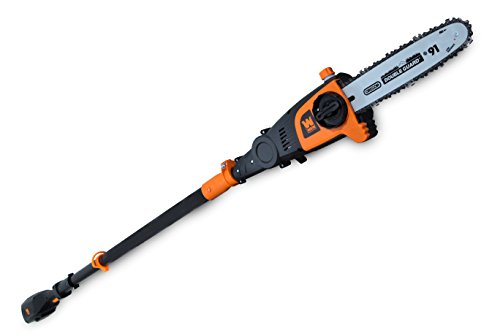 WEN 40421 40V Max Lithium Ion Cordless Pole Saw