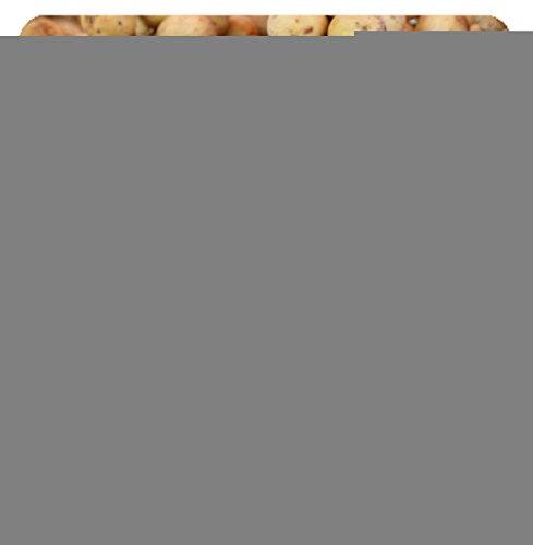 Luxlady Suqare Mousepad 8x8 Inch Mouse Pads/Mat design IMAGE ID: 20598161 Wollongong - Kids Wollongong