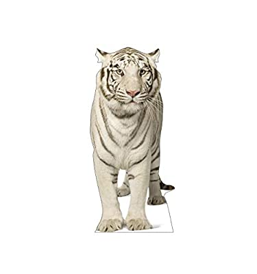 Advanced Graphics Life Size Cardboard Cutout Standup - Animals