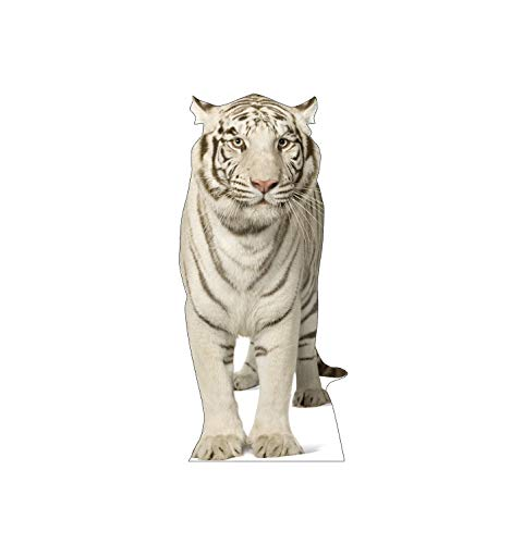 Advanced Graphics White Tiger Life Size Cardboard Cutout ()