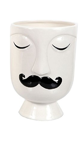 DEI Face Vase/Planter (Large) (Mustache Man) (Face Planter)