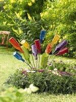 Gardener's Supply Bottle Bush