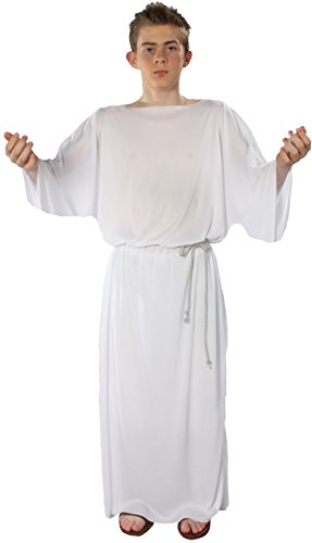 Alexanders Costumes Story of Christ Biblical Gown Child Costume, White, Medium (Christmas Nativity Costumes)
