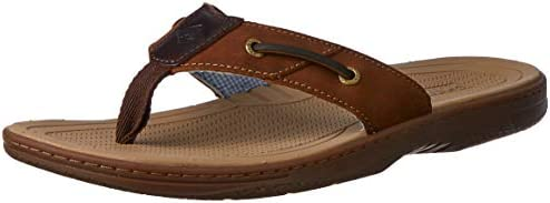 Sperry Top Sider Baitfish Thong Sandal product image