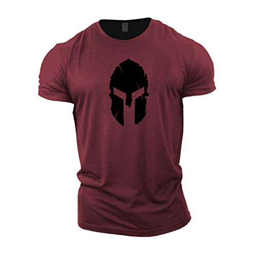 GYMTIER Mens Bodybuilding T-Shirt - Spartan Helmet - Gym Training Top