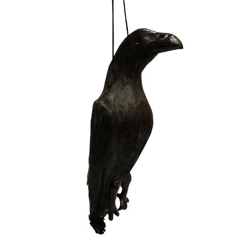 VisualScare Feather Scare Crow, Crow Repellent Bird Repellent ()