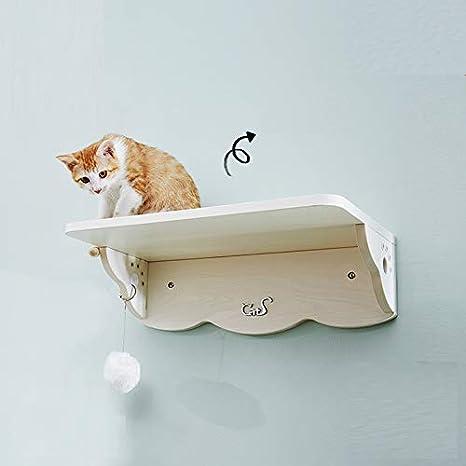 'Cats Diseño Nº 01 Gatos Estantería