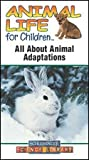 Animal Life for Children All About Animal Adaptations