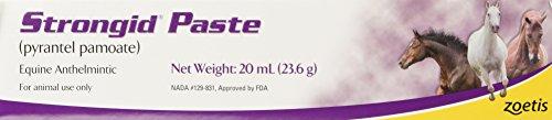 Pfizer Strongid Dewormer Paste for Horses, 23.6gm
