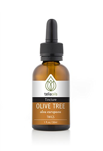 Glass Organic Leaf (Olive Leaf Organic Liquid Extract, Olive Leaf (Olea Europaea) Tincture for Immune System Support 1 Oz / 30)