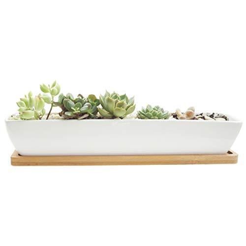 JINMURY11 Inch White Ceramic Pot Long Rectangle Minimalist-Style Desgin Succulent Pot/Cactus Planter/Flower Pot Set with Bamboo (Dish Garden Planter)