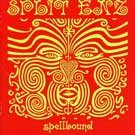 Spellbound: Very Best of Split Enz