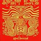 Spellbound: Very Best of Split Enz