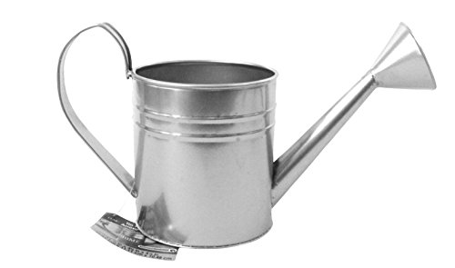 Plaid Tin Watering - Tin Watering Can