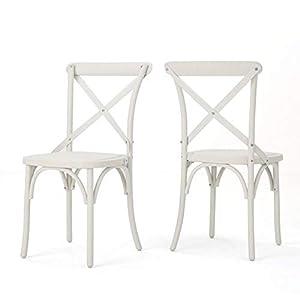 Christopher Knight Home Shiloh Farmhouse Plastic Nylon Dining Chairs, 2-Pcs Set, French White