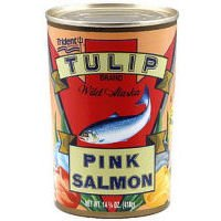Tulip Pink Salmon (Case of ()
