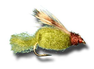 - Sparkle Caddis Pupa - Olive Fly Fishing Fly - Size 16 - 3 Pack