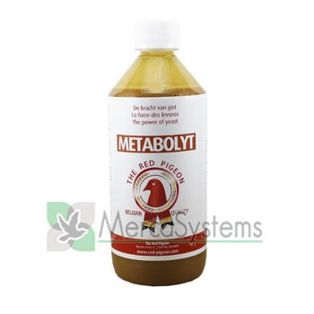Amazoncom The Red Pigeon Metabolyt Is A Nutritional Compound Of