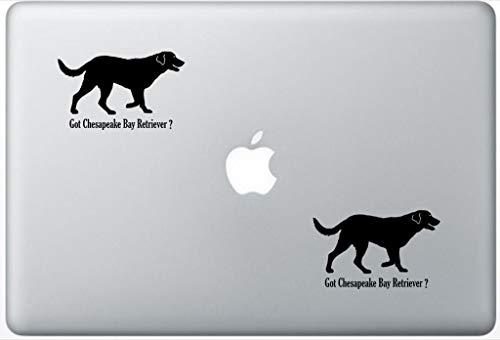 (Got Chesapeake Bay Retriever Decal PetsAffectionLaptop0206 Set of Two (2X), Dog Decal, Sticker, Laptop, Ipad, MacBook)