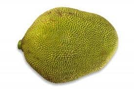 Fresh Whole Jackfruit (One Fruit 15-18lbs) by Tropical Importers (Image #1)