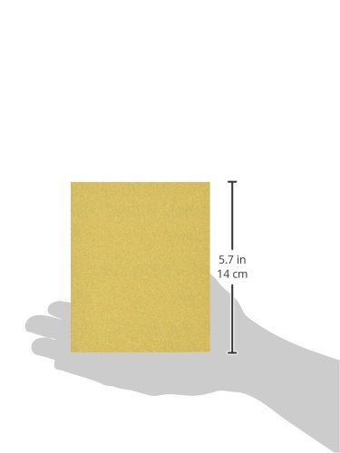 Grizzly G3864 1//4 Sanding Sheet A100 Handle 5-Piece
