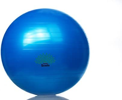 Pelota de gimnasia de la marca Sosila, balón de yoga, pilates ...