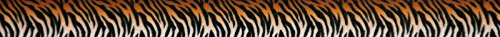 Country Brook Design 1/2 inch Bengal Tiger Stripes Photo Quality Polyester, 5 ()