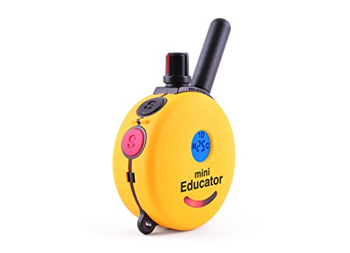 Best Dog Training e Collar - Educator Einstein Remote Trainer - Mini Educator 1/2 Mile Remote Trainer ET-300TS WaterProof - Vibration Tapping Sensation With eOutletDeals Postcard Magnet Calendar by E-Collar Dog Trainer (Image #2)